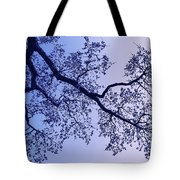 Pink And Blues Tote Bag