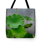 Pink And Green On Grey Tote Bag