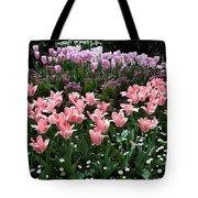 Pink And Mauve Tulips Tote Bag