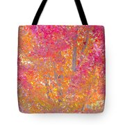 Pink And Orange Autumn 2 Tote Bag