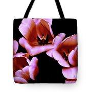 Pink And Orange Tulips Tote Bag