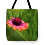 Pink And Orange Wild Daisy Tote Bag