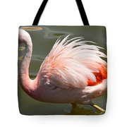 Pink And Proud Tote Bag
