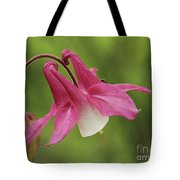 Pink And White Columbine Tote Bag