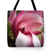 Pink And White Magnolia Tote Bag