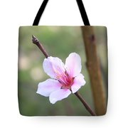 Pink And White Nectarine Blossom Tote Bag