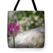 Pink And White Tulip 02 Tote Bag