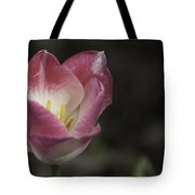 Pink And White Tulip 04 Tote Bag