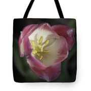 Pink And White Tulip Center Squared 2 Tote Bag