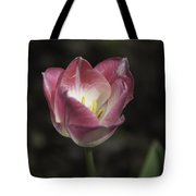 Pink And White Tulip Squared 2 Tote Bag