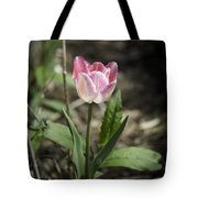 Pink And White Tulip Squared Tote Bag