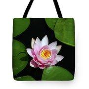 Pink And Yellow Lotus Waterlily Tote Bag