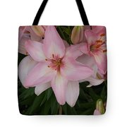 Pink Asiatic Lilies 1 Tote Bag