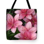 Pink Asiatic Lilies 2 Tote Bag
