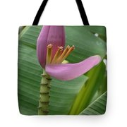 Pink Banana Flower Tote Bag