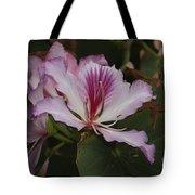 Pink Bauhinia Flower Tote Bag