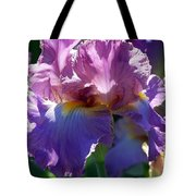 Pink Bearded Iris Photograph Tote Bag