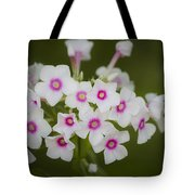 Pink Bright Eyes Garden Phlox Tote Bag
