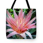 Pink Bromeliad Tote Bag