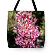 Bromeliads Flowers Tote Bag