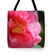Pink Camelia Closeup Tote Bag