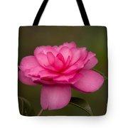 Pink Camellia 3 Tote Bag