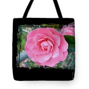 Pink Camellias With Fence And Framing Tote Bag