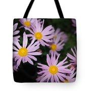 Pink Clara Curtis Daisy Chrysanthemum Tote Bag