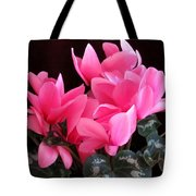 Pink Cyclamen 2  Tote Bag