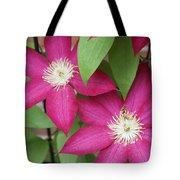 Pink Clematis 2 Tote Bag