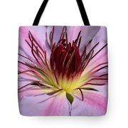 Pink Clematis Closeup Tote Bag