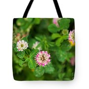 Pink Clover Flowers Tote Bag