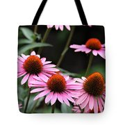 Pink Coneflowers Tote Bag