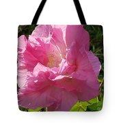 Pink Confederate Rose Tote Bag