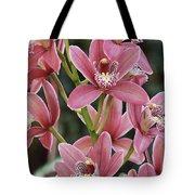 Pink Cymbidium Orchid #3 Tote Bag