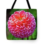 Pink Dahlia In Golden Gate Park In San Francisco, California  Tote Bag