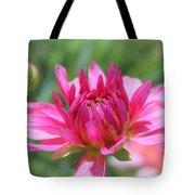 Pink Dahlia Beauty Tote Bag