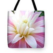 Pink Dahlias Art Dahlia Flowers Giclee Prints Baslee Troutman Tote Bag