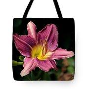 Pink Daylily Tote Bag
