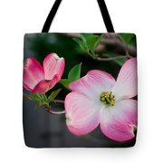 Pink Dogwood In The Morning Light Tote Bag