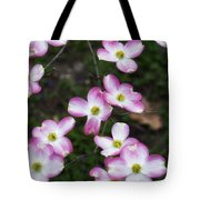 Pink Dogwood Mo Bot Garden Dsc01756 Tote Bag