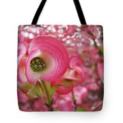 Pink Dogwood Tree Flowers Dogwood Flowers Giclee Art Prints Baslee Troutman Tote Bag