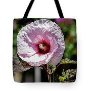 Pink Echo Tote Bag