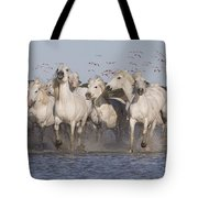Pink Flamingoes And White Horses Tote Bag