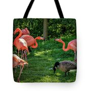 Pink Flamingos And Imposters Tote Bag