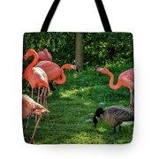 Pink Flamingos And Imposters Tote Bag