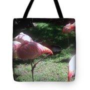 Pink Flamingos Resting Tote Bag