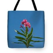 Pink Florida Oleander Blossom Tote Bag