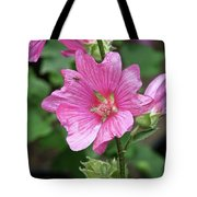 Pink Flower With Bug. Tote Bag