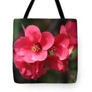 Pink Flowering Quince Tote Bag